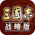 三国志·战略版九游版
