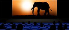 免费看电影的软件合集